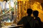 20140828-HK_Wetland_Park_01-13