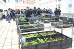 20160226-Urban_Organic_Farming_05-06