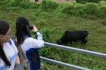 20111111-hoihawan_01-12