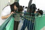 20111111-hoihawan_08-11