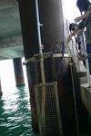 20111111-hoihawan_11-14