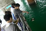 20111111-hoihawan_11-23
