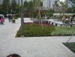 20120212-plantation_03-01