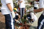 20111022-plantation_05-09