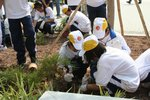 20111022-plantation_05-13