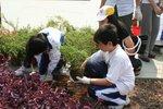 20111022-plantation_05-16