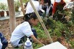 20111022-plantation_05-19