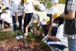 20111022-plantation_05-30