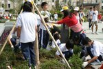 20111022-plantation_05-34