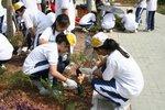 20111022-plantation_05-35
