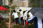 20111022-plantation_05-48