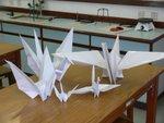 20110323-cranes-06