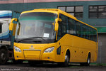 yellow_ns
