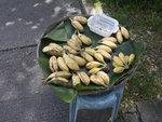 沙螺灣村民把蕉放到村口,上面寫上價錢$2或$3一梳,要買就可將錢放下