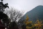 風景-_040