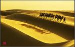 駝影幢幢黃沙無垠
