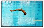 跳水雄姿 (二)