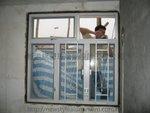 大埔富善村鋁窗 (3)