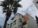 元朗加州花園水仙徑 鋁窗 (2)
