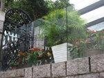 強化玻璃欄河