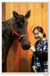 nEO_IMG_horse014