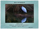 20190120 小白鷺
