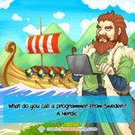 Programmer from the Nords - Programming Joke