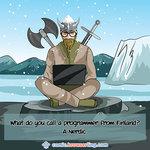 Viking - Programming Joke