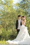 wedding gown 008