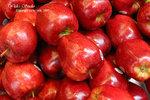 DSC_0016_fruit_word