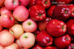DSC_0028_fruit_word