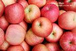 DSC_0029_fruit_word