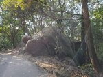 22022021_Wanchai Gap Road Park to Tai Tam Reservoir00007
