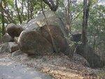 22022021_Wanchai Gap Road Park to Tai Tam Reservoir00008