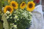17112007_Tso Wo Hang Flower Materials00010