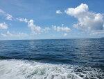 23052021_Samsung Smartphone Galaxy S10 Plus_Voyage to Kwo Chau and Tung Lung Island00019