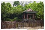 20072019_Lingnan Garden Snapshots00020