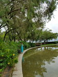 07072018_Samsung Smartphone Galaxy S7 Edge_Taipo Waterfront Park_Lo Tsz Yan00028