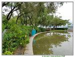 07072018_Samsung Smartphone Galaxy S7 Edge_Taipo Waterfront Park_Lo Tsz Yan00051