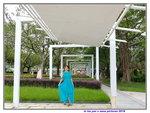 07072018_Samsung Smartphone Galaxy S7 Edge_Taipo Waterfront Park_Lo Tsz Yan00056