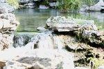 18092010_Scenic of Lingnan Garden00025