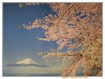 01012019_Fujishan Snapshots00002