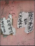無 力 反 抗 IMG_0799