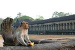 L1000536-Angkor-aa