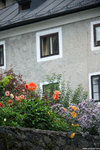 IMG_0903-Austria-aa