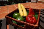 酒店為我們免費提供的水果,最好就是坐在二樓房外的太陽椅慢慢品嚐。