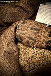 P5015417-coffeeassembly-aa