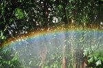 我的第一站是動植物公園。想不到,我在這裡看到美麗的彩虹呢﹗