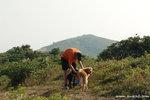 帶著狗兒來行山,真是一樂也(不過狗兒會中暑嗎)。