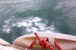 100_1682-ferry